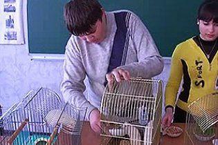 В днепропетровской школе пытали крыс, чтобы отучить учеников от чипсов и сухариков