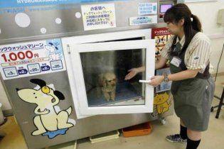 Изобретена стиральная машина для домашних животных
