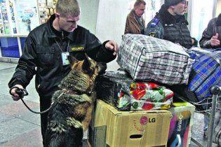 """Співробітники аеропорту """"Бориспіль"""": у нас може повторитися """"Домодєдово"""""""
