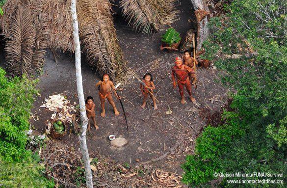Невідоме_плем'я_1