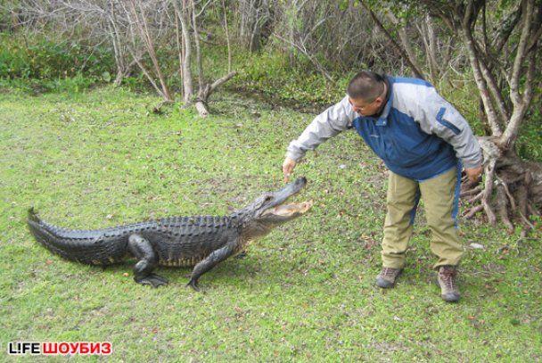 Глюкоза пожертвовала 10 тысяч на крокодилов