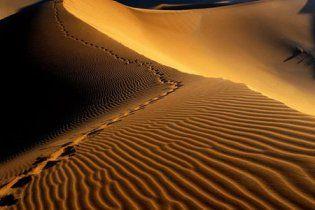 Американец выжил, проведя 5 дней в пустыне без воды и пищи