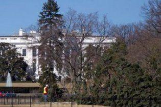 В Вашингтоне ветер вырвал с корнем главную рождественскую елку США