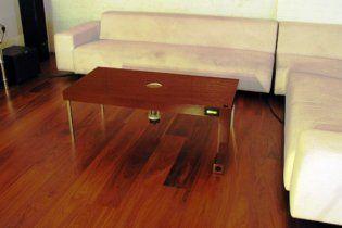 Создана мебель, пожирающая мух, комаров и мышей