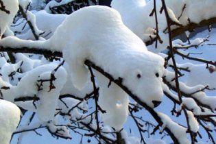 Погода в Украине на вторник, 22 февраля