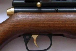 На Буковині школяр, вправляючись у стрільбі, застрелив однокласника