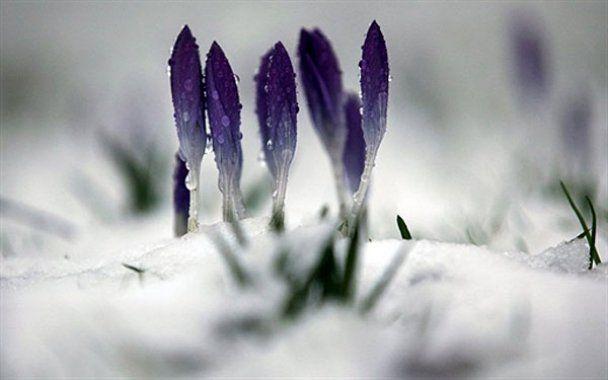 25 лютого у фотографіях