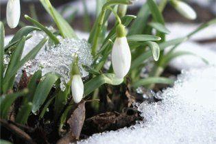 Погода в Україні на четвер, 10 березня