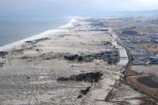 В Японии цунами накрыло судно с сотней пассажиров