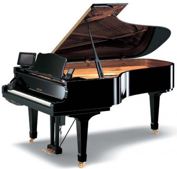 Дібров купив для сина рояль за 1,5 мільйона