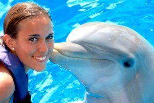 Столичный дельфинарий наградил себя фальшивой благодарностью Януковича