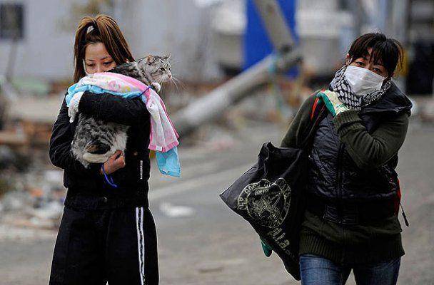 Землетрус в Японії спричинив десятиріччя катастроф