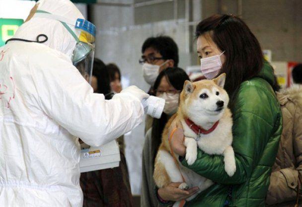 Рівень радіації у Києві удвічі вищий, ніж у Токіо