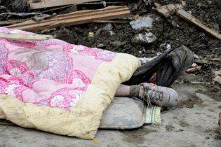 Количество жертв и пропавших без вести в Японии достигло 18 тысяч