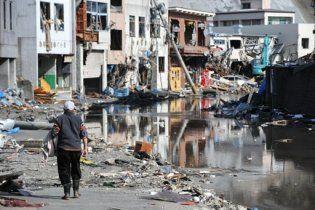 Землетрясение в Японии оценили в 235 млрд долларов