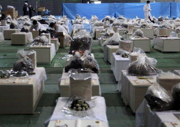 Уровень радиации в Киеве вдвое выше, чем в Токио