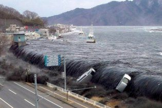 В туалеті знайшли півмільйона доларів для постраждалих від цунамі в Японії