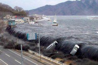 Японський півострів змістився на 5 метрів