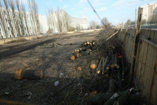 У Києві незаконно зрубали майже сотню дерев у сквері
