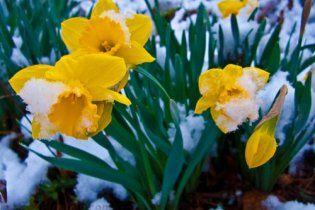Погода в Україні на суботу, 26 березня