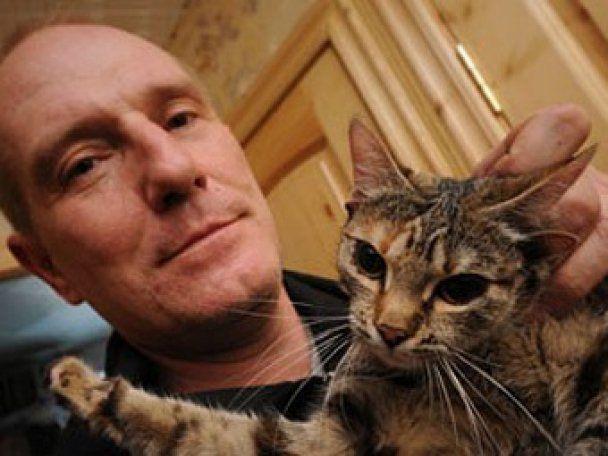 Хозяин пятиухой кошки отказался знакомить ее с треухим турецким котом