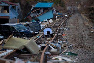 Японський журналіст-сталкер показав відео із зони відчуження