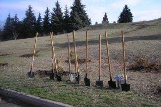 Украинские чиновники убрали улицы и посадили деревья