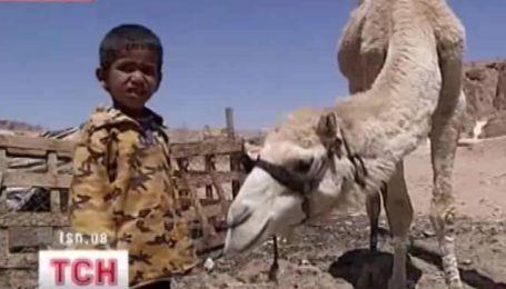 На египетских курортах уже открыли все экскурсионные маршруты