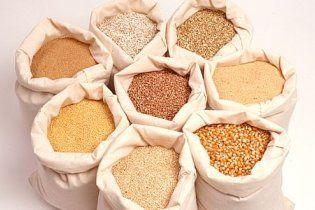 Україна експортує 20 млн тонн зернових із нового урожаю