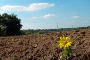Китайці отримають землю на Харківщині в обмін на інвестиції