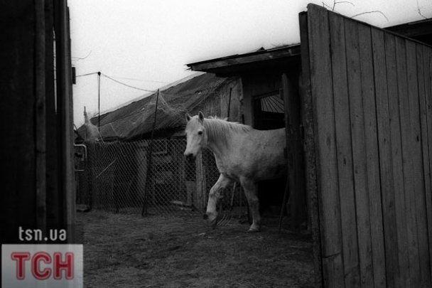 """25-летие аварии на ЧАЭС: репортаж из """"зоны отчуждения"""""""