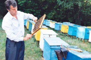 Ющенко проведет в Украине Всемирный конгресс пчеловодов