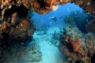 У Карибському морі знайшли скарб на мільйони доларів