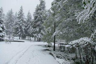 Румунію засипало снігом