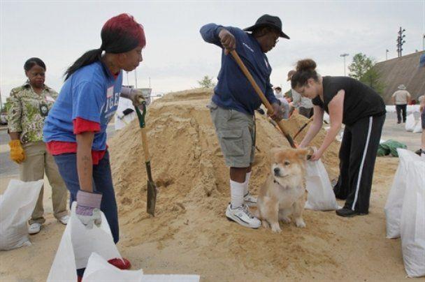 Река Миссисипи грозит США рекордным потопом