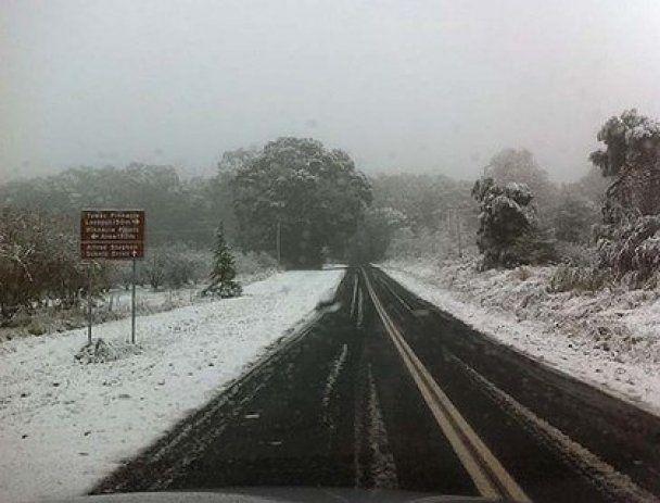 Австралію накрив сильний снігопад