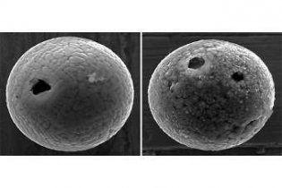 Вчені знайшли найстаріші на Землі мікрометеорити