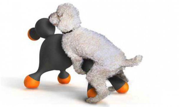 В России начали продавать секс-кукол для животных