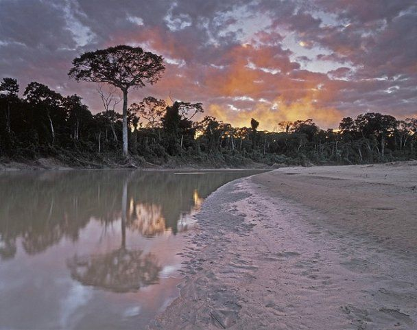 Названо десять див світу, які зникнуть до 2030 року