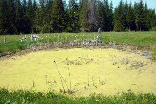 В озері виявили скелет прикутого до ліжка чоловіка, який пролежав там три роки