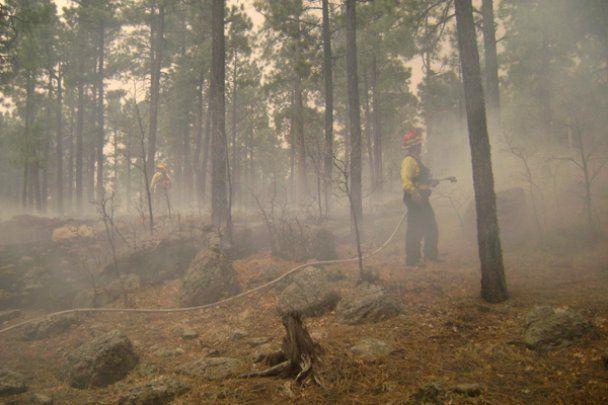 В США сталась найбільша в історії Арізони пожежа