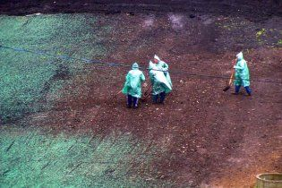 К визиту Путина покрасили землю, а для Медведева помыли подъезды шампунем