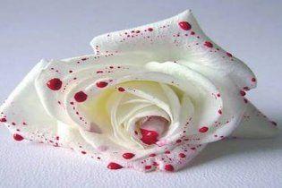 У розпал весілля мати нареченого зарізала себе на очах у гостей