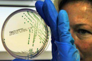 В Европе найдены новый источник кишечной инфекции и новый тип бактерии-мутанта
