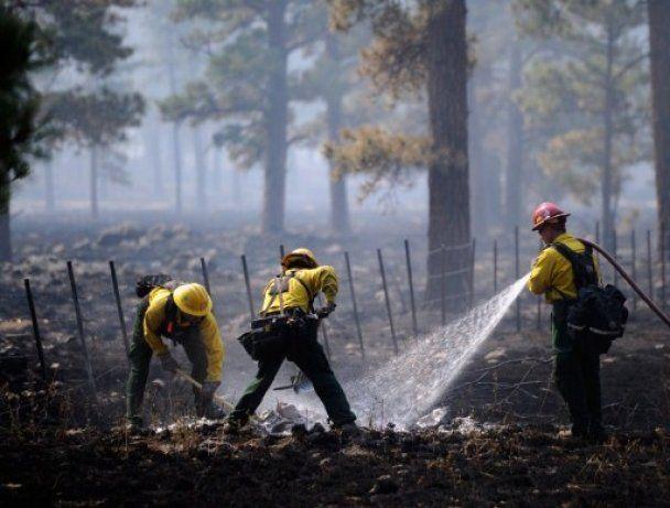Через лісові пожежі в Арізоні евакуювали вже 9 тисяч осіб