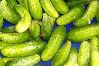 Европейским фермерам компенсируют 210 млн евро за бойкот овощей