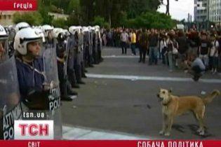 У Греції на антиурядові акції протесту вийшли собаки