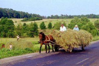 Щорічно в Україні зникає 15 сіл