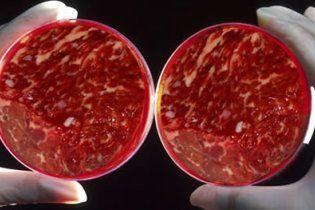 Во избежание экологической катастрофы людей переведут на искусственное мясо