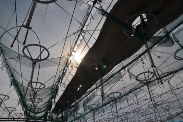 В Киеве строят крышу над главной ареной Евро-2012